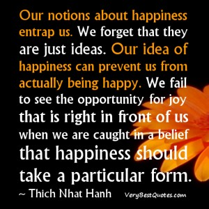 Blog-Our-notions-about-happiness-entrap-us...